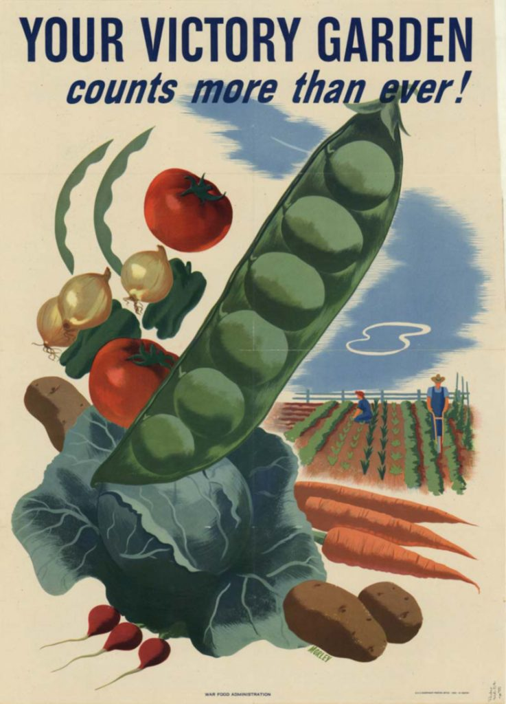"""Victory gardens said """"we are all in this together"""" and are the perfect metaphor for the social contract."""
